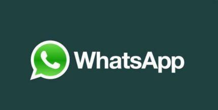 Si possono effettuare chiamate con Whatsapp? come si fa?