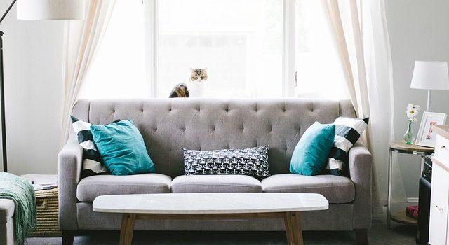 Cambiare il divano: come scegliere il colore più adatto