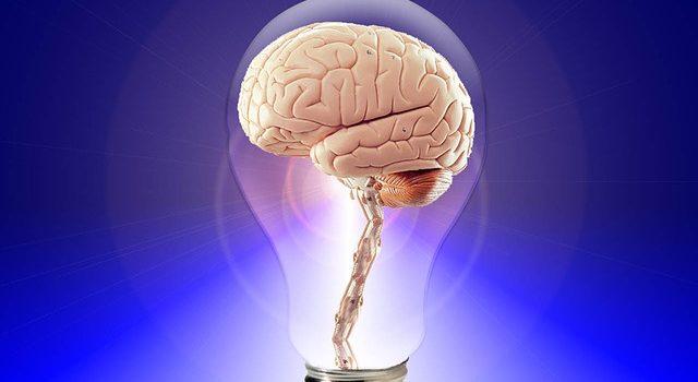 Il Cervello umano assume decisioni autonome?