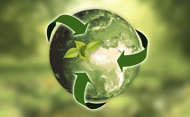 Come rendere un'azienda sostenibile? Tutto quello che devi sapere